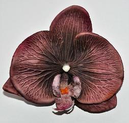 """4"""" Reddish Brown Orchid Silk Flower Hair Clip Luau Wedding C"""