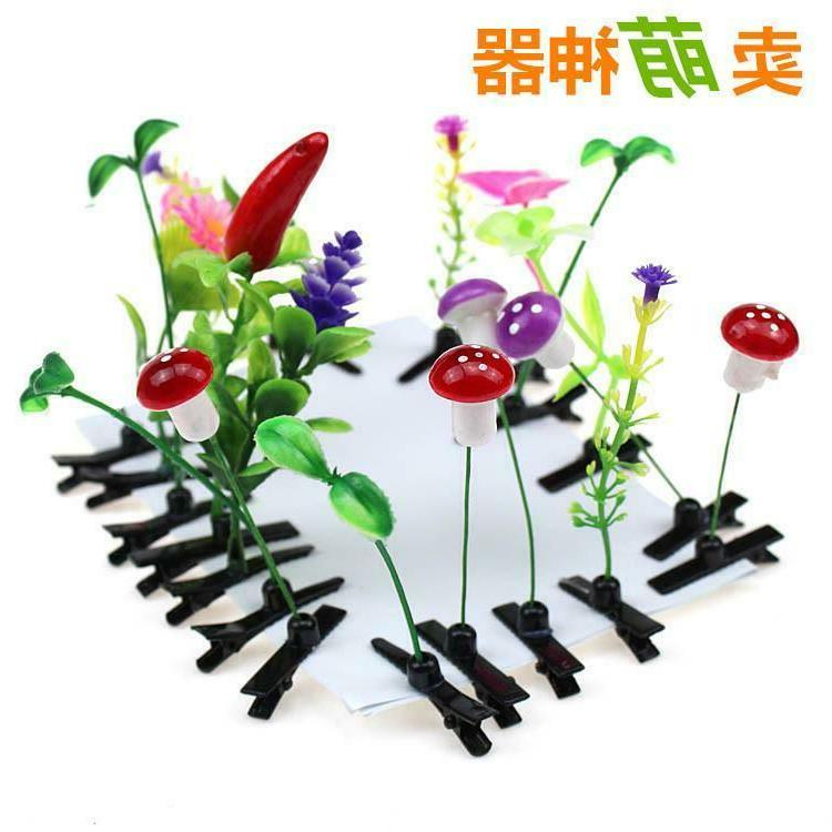 20x funny grass leaf plant sprout flower