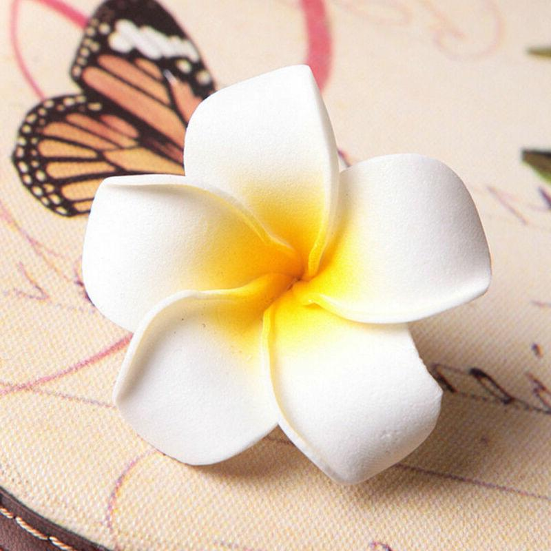6Pcs Plumeria Hair Hawaiian