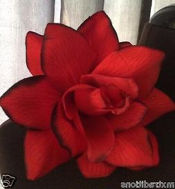 RED w/ BLK FLOWER HAIR CLIP FOR MEXICAN FIESTA,5 DE MAYO,DAY